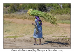 Woman Carrying Reeds