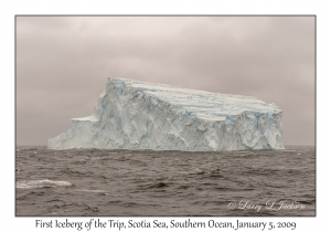 First Iceberg of the Trip