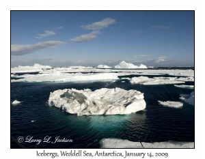 Weddell Sea Icebergs