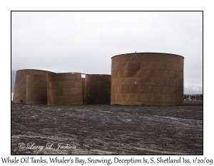 Whale Oil Tanks, Snowing