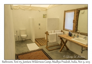 Bathroom, Tent #5