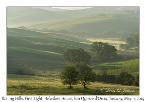 Rolling Hills at First Light