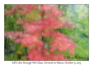Fall Color through Wet Glass