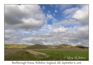 Marlborough Downs